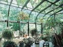 Garden room 2